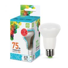 Լամպ LED-R63-STD 8W 230V E27 4000K 720LM ASD